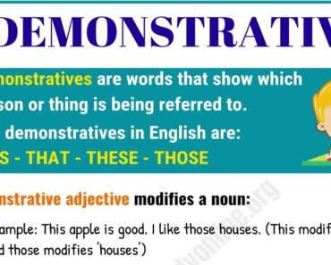 Demonstratives Adjectives & Pronouns - This, That, These, Those 5