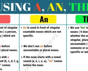 Definite and Indefinite Articles: Using A, An,The in English 6