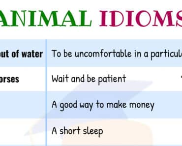 10 Useful Animal Idioms in English with their Meaning 2