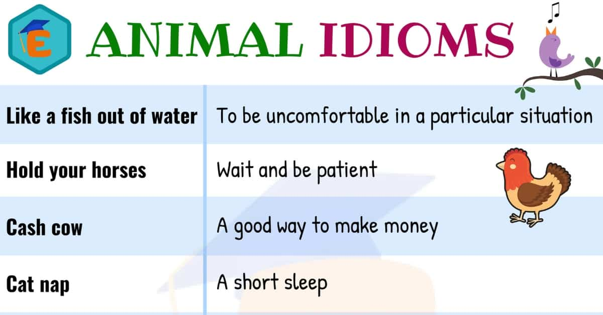 10 Useful Animal Idioms in English with their Meaning 1