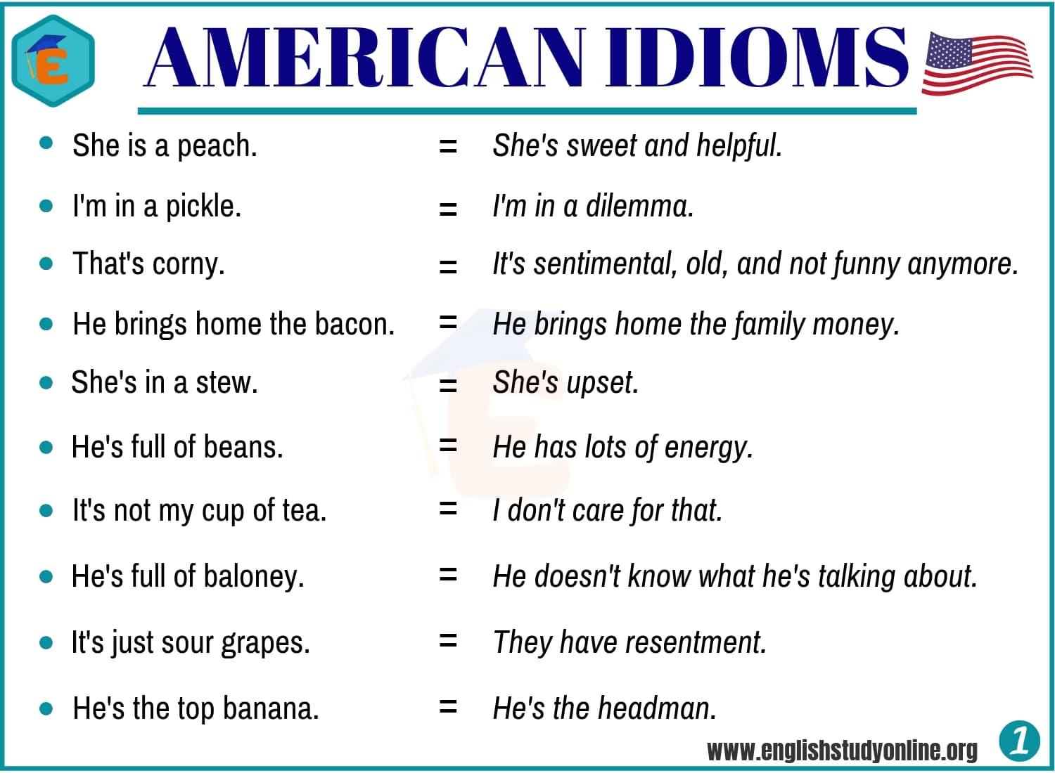 20+ Important American Idioms with Example Sentences