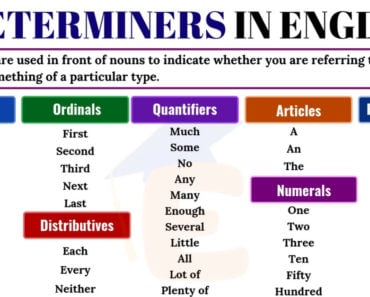 Determiners | Definition, Useful List & Examples in English 5