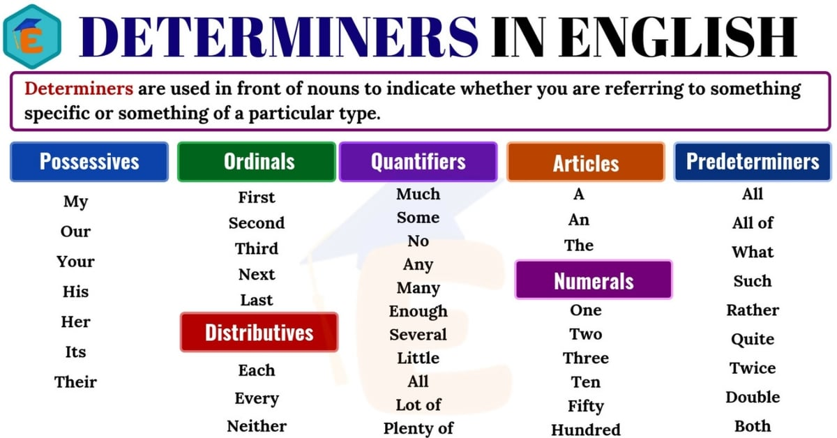 Determiners | Definition, Useful List & Examples in English 1