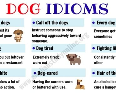 Dog Idioms and Sayings | List of 35+ Interesting Idioms Related to Dog in English 2