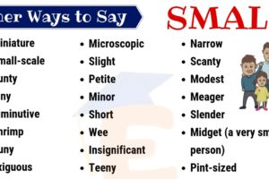 Small Synonym: List of 35 Helpful Synonyms for SMALL with Example Sentences 10