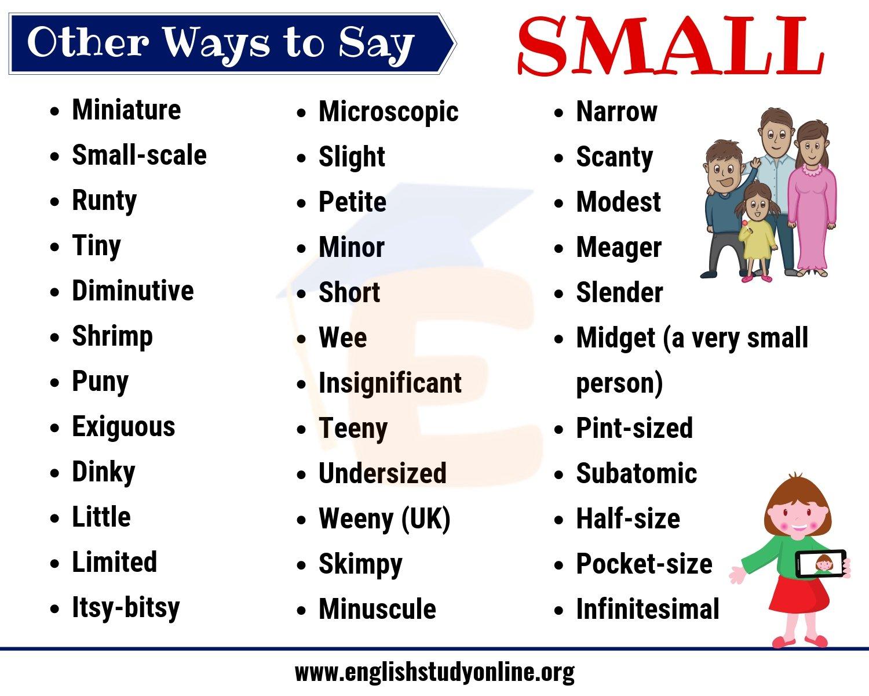 Small Synonym