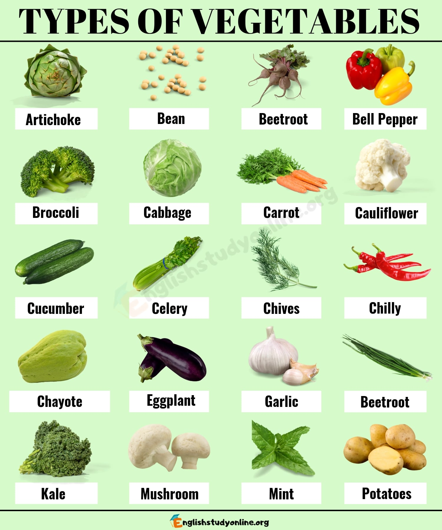 Types of Vegetables