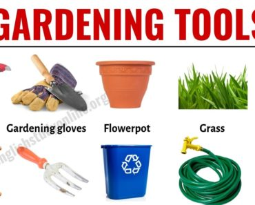 Gardening Tools: List of 30 Useful Tools Names for Gardening 6