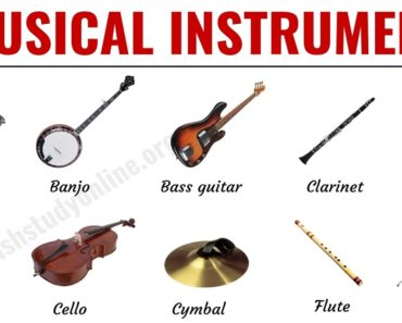 Musical Instruments: List of 30 Popular Types of Instruments in English 7