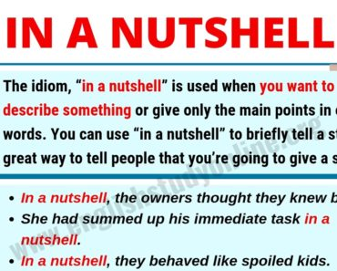 "In A Nutshell: What Does ""In A Nutshell"" Mean? 