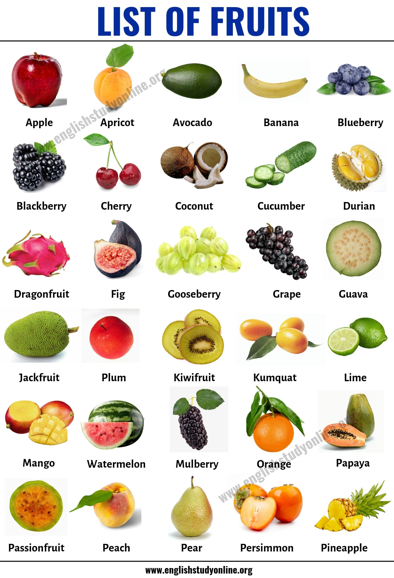 List of Fruits