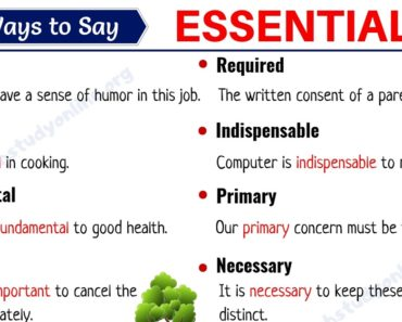 Essential Synonym: List of 25 Important Synonyms for ESSENTIAL with Examples 2