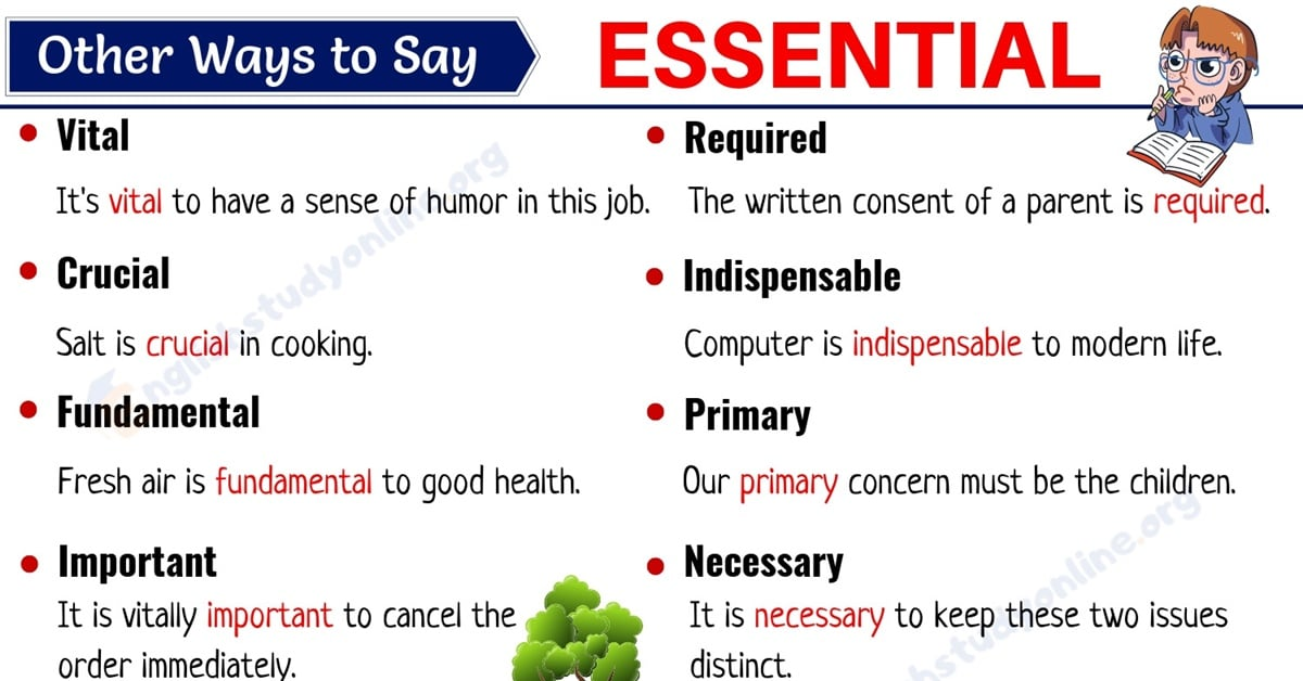 Essential Synonym: List of 25 Important Synonyms for ESSENTIAL with Examples 10