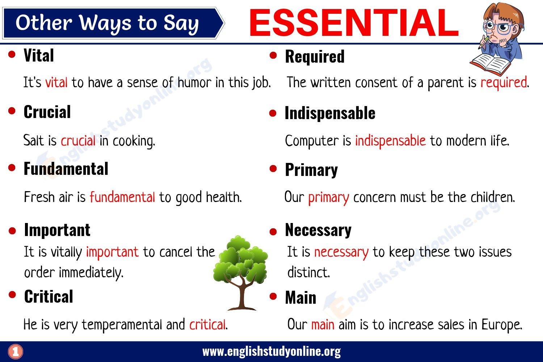 Essential Synonym