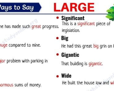 Large Synonym: List of 25+ Useful Synonyms for the Word LARGE 7