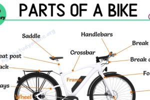 Bike Parts: Different Parts of A Bike with Interesting ESL Image 12