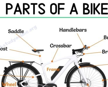 Bike Parts: Different Parts of A Bike with Interesting ESL Image 1
