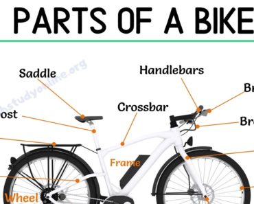 Bike Parts: Different Parts of A Bike with Interesting ESL Image 3
