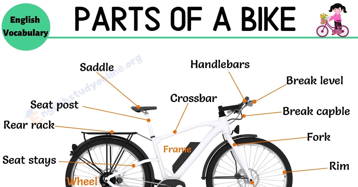 Bike Parts: Different Parts of A Bike with Interesting ESL Image 11
