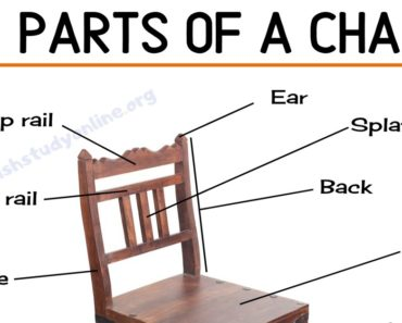 Parts of A Chair: List of Different Parts of A Chair with Useful ESL Image 3