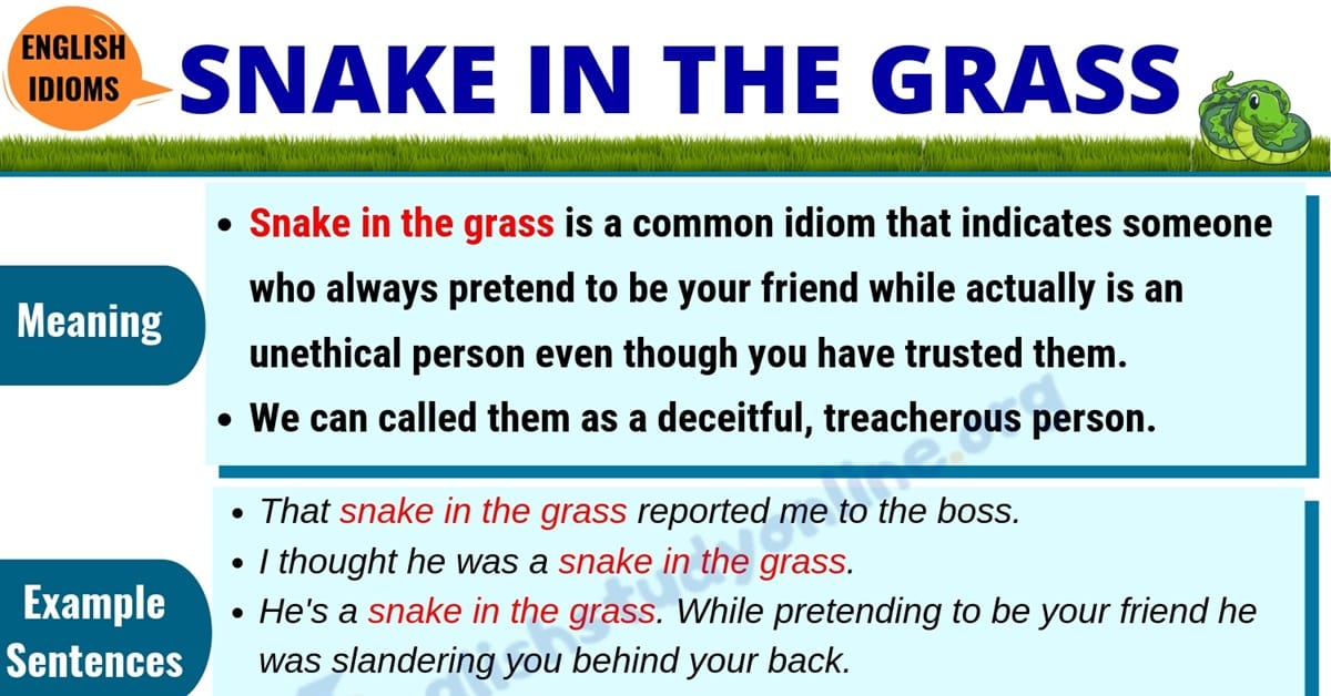 Snake In The Grass: Definition, Useful Examples & Synonyms List 1