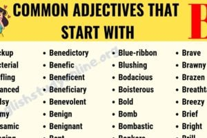 60+ Popular Adjectives That Start with B with Useful Examples 10