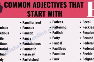 200+ Useful Adjectives That Start with F with ESL Infographic 7