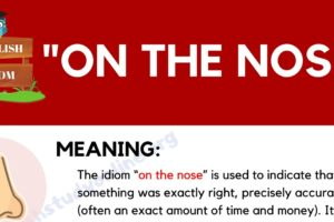 """On the Nose"": What Does This Interesting Idiom Mean? 10"