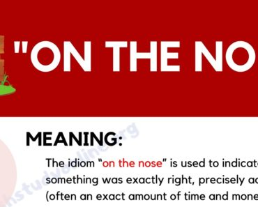 """On the Nose"": What Does This Interesting Idiom Mean? 4"