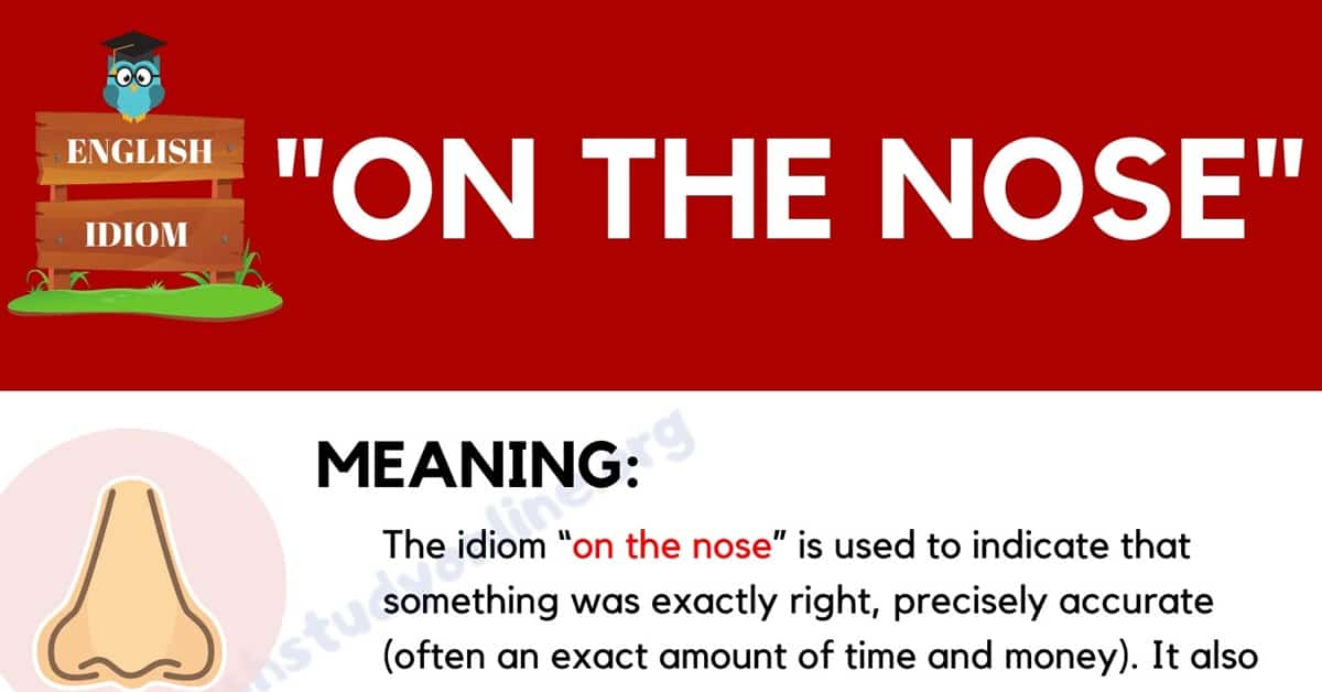 """On the Nose"": What Does This Interesting Idiom Mean? 1"