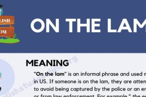 On the Lam: What Does This Popular Idiom Mean? 6