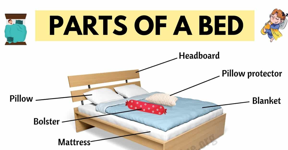 Parts of A Bed: Learn Useful Vocabulary about Bed Parts 1