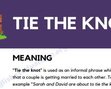 Tie the Knot: What Does This Popular Idiom Mean? 5