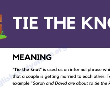 Tie the Knot: What Does This Popular Idiom Mean? 8