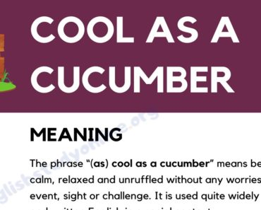 (As) Cool As A Cucumber: Definition, Origin with Useful Example Sentences 6