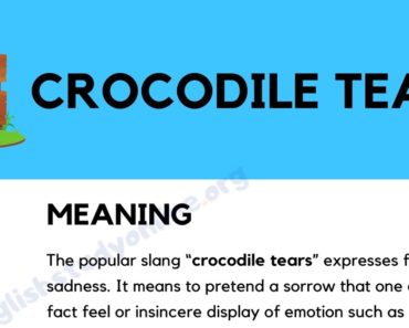 Crocodile Tears: Definition, Origin & Practical Examples in English 3