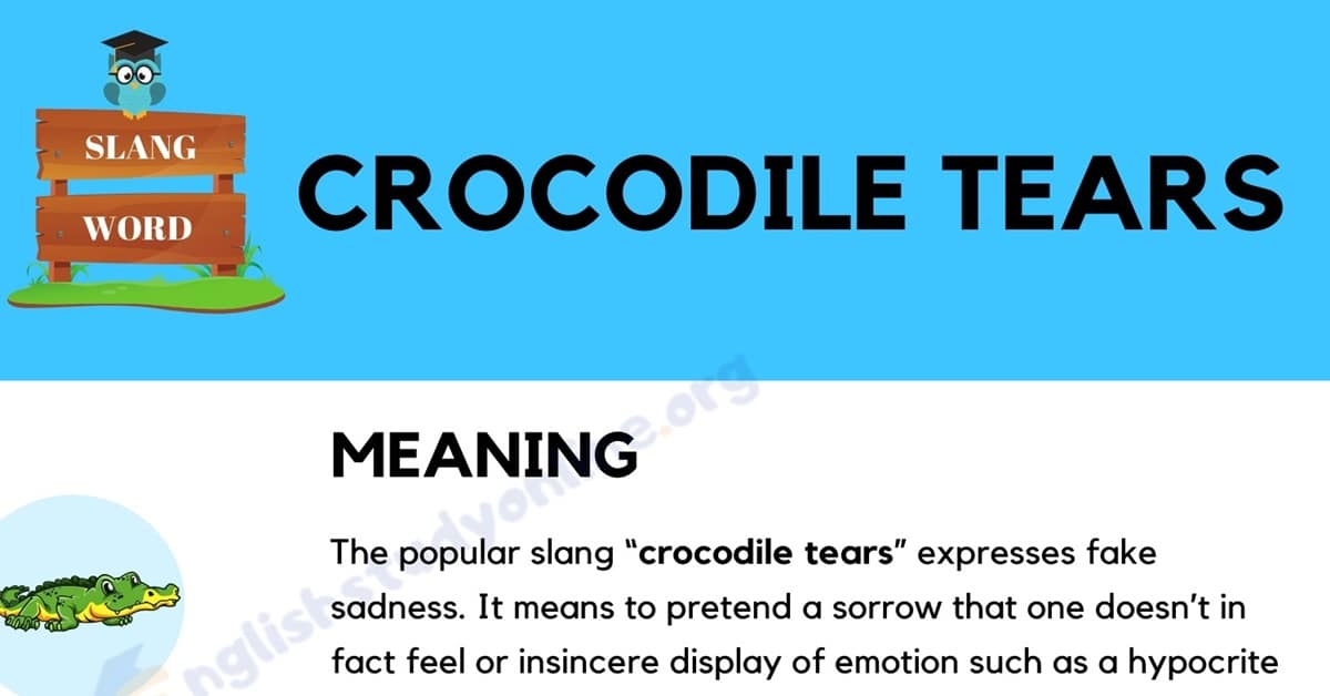 Crocodile Tears: Definition, Origin & Practical Examples in English 1