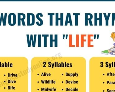 120+ Useful Words That Rhyme with Life in English 6