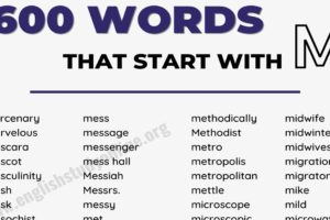 1000+ Amazing Words That Start with M 3