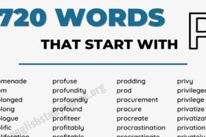 1778 Amazing Words that Start with P in English 5