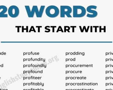 1778 Amazing Words that Start with P in English 1